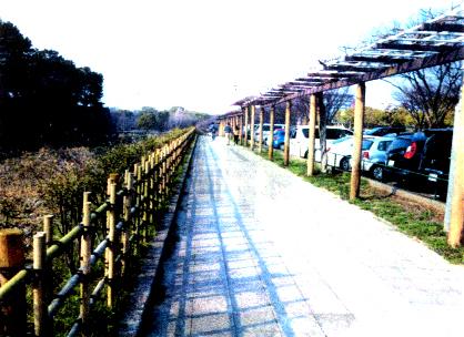 名古屋城東門駐車場入口から名城公園への園路と藤棚・お堀と城壁・駐車場を望む