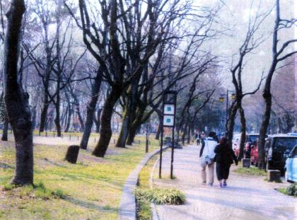 名城公園南入口噴水の南側東から西に走る道路について